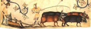 Peasants at work on a plough team, from the Luttrell Psalter