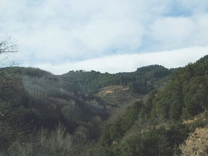 Scenery around the hills south-west of Sant Hilari Sacalm