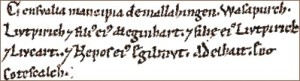 Text sample from a book in the Hochstift Freising