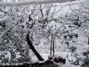 snowed_in1_shrunk