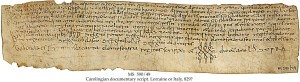 Schoyen Collection MS 590/49, a sale charter of 965 from Cerdanya