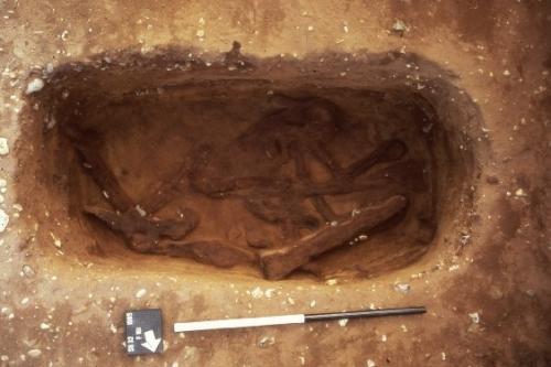 Sutton Hoo Burial 27, as uncovered; image copyright Martin Carver and The British Museum and used by kind permission