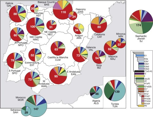 Haplogroup Distributons in Iberian, North African, and Sephardic Jewish Populations (Adams et al. 2008)