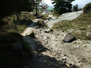 Streambed leading down the hill from the Castell de Gurb