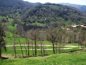 El Rauric, in Vallfogona del Ripollès