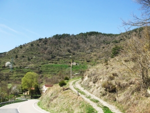 The Serra de Vallfogona viewed from the road through the valley