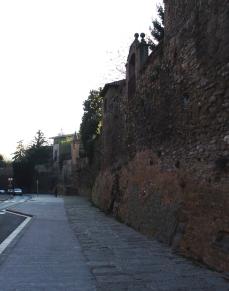 Walls of Peter III, Vic