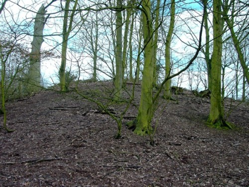 Troston Mount, near Honington, Suffolk