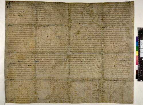 British Library MS Cotton Augustus ii.38, otherwise known as Sawyer 876, a charter of Æthelred for the abbey of Abingdon from 993