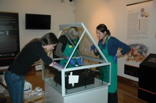 Morn Capper and others at work on the Birmingham Museum display of the Staffordshire Hoard