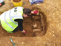 'Deviant' burial from the late Roman cemetery at Horcott, Gloucestershire