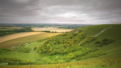 View of Dunstable Downs, Bedfordshire