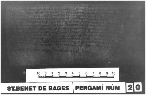 Archivo de la Corona d'Aragón, Monacals, Pergamins Sant Benet de Bages no. 20 recto