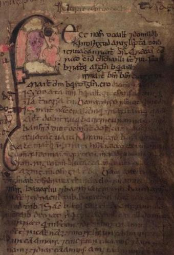 Folio 53 of the Book of Leinster