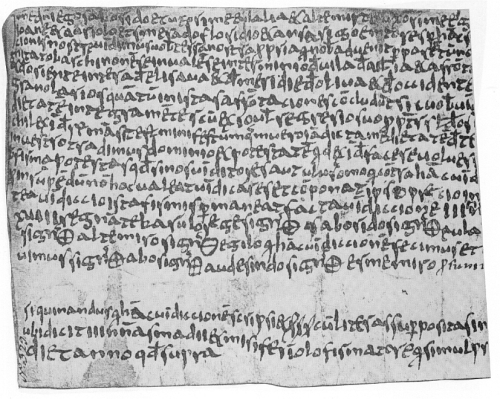 Partial facsimile of a Vic charter in which a third-party collects payment for one of the transactors