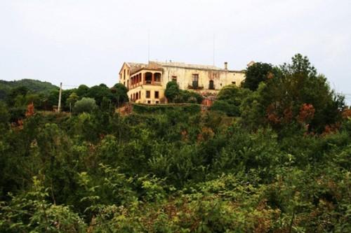 Sant Salvador de Servitge de Vallformosa