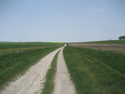 The track of an ancient herepath near Avebury