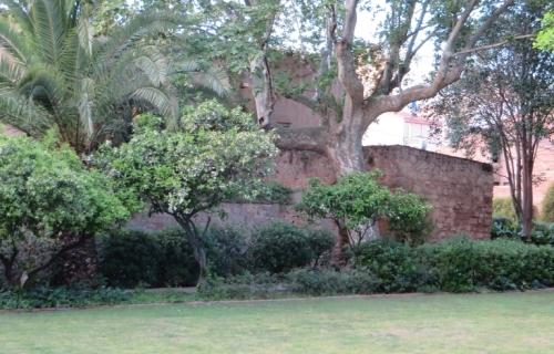 Mas Can Summaro, in l'Hospitalet de Llobregat, seen through trees