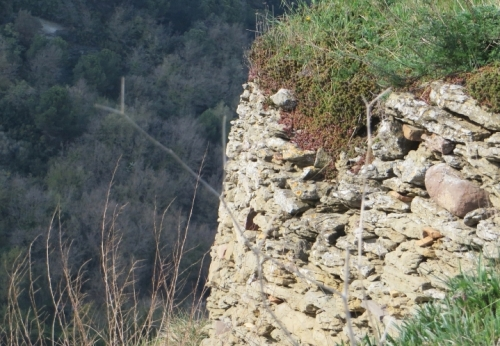 An outcrop of the Turó del Castell de Tona