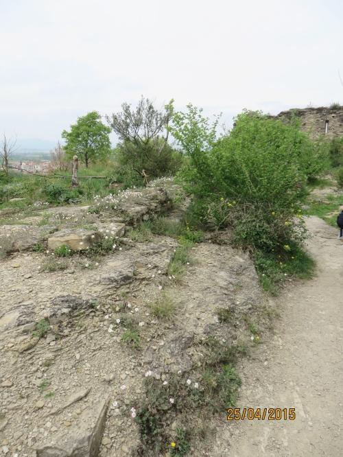 As yet unexposed remains at l'Esquerda, Roda de Ter