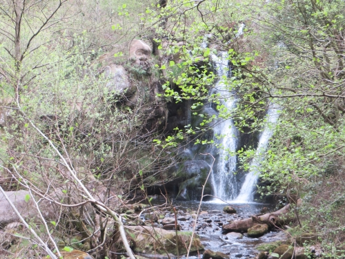 Waterfall in the Bolton Abbey Grounds