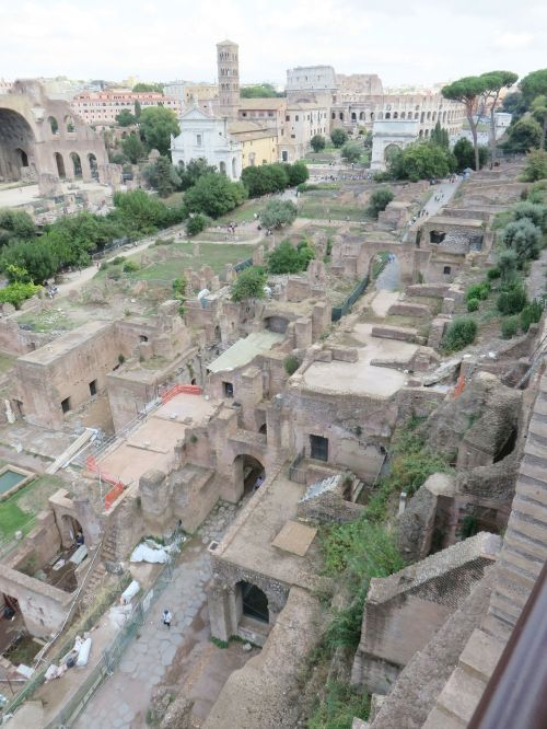 A view down the Roman Forum from the Palatine Hill